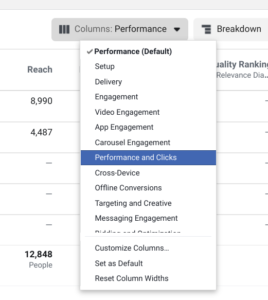 Performance and clicks columns option in Facebook